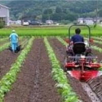 大豆用中耕培土器のサムネイル
